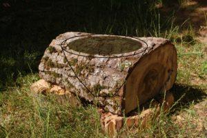 aus diesem Stück Nussbaumstamm soll eine Schale gedrechselt werden